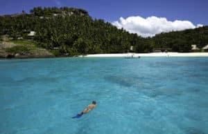 north island snorkelling
